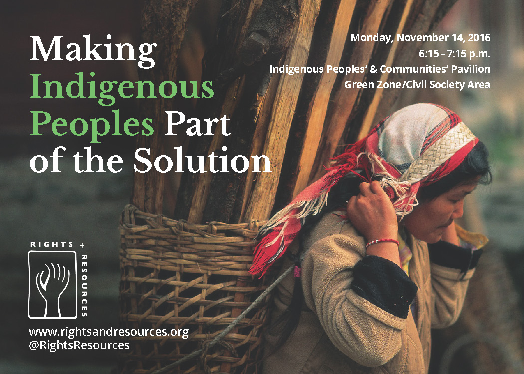 Making Indigenous Peoples Part of the Solution | COP22
