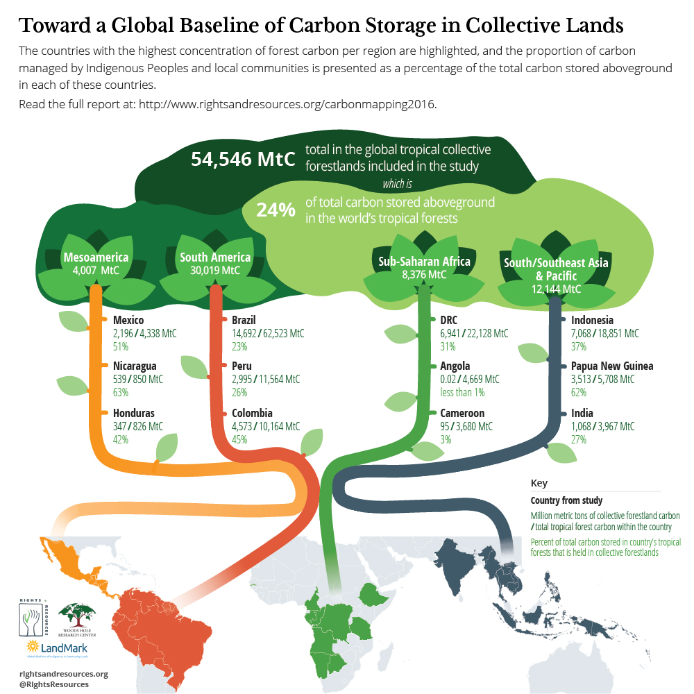 Toward a Global Baseline of Carbon Storage in Collective Lands Graphic | RRI