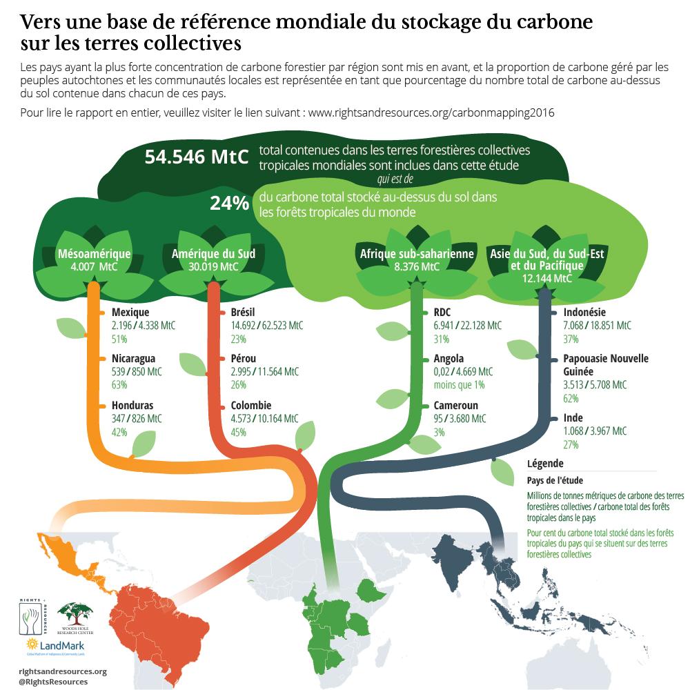 Vers une Base de Reference Mondiale de Stockage du Carbone sur les Terres Collectives   RRI