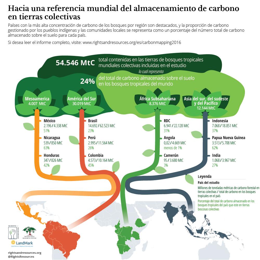 Hacia una Referencia Mundial del Almacenamiento de Carbono en Tierras Colectivas