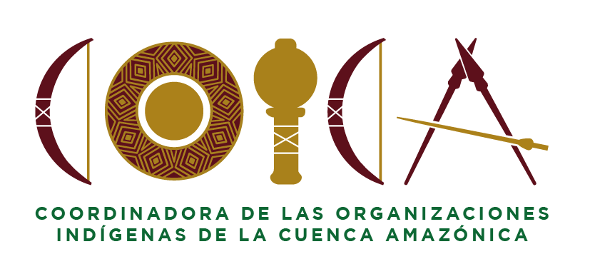 Coordinator of Indigenous Organizations of the Amazon River Basin (COICA)